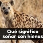 Soñar con hienas